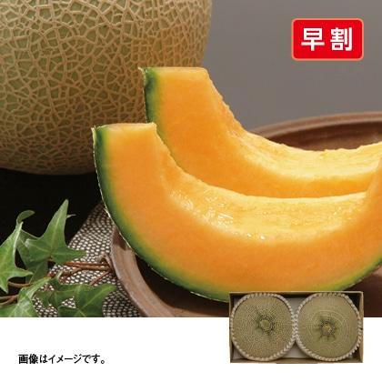 熊本県産 クインシーメロンB