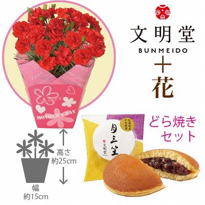 【母の日】赤カーネーション4号鉢と文明堂どら焼き