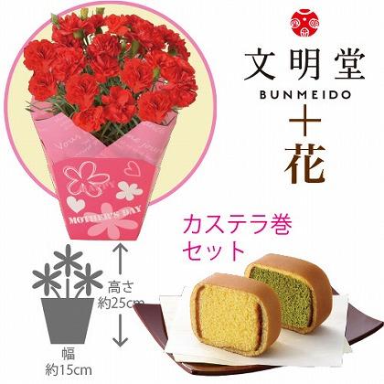 【母の日】赤カーネーション4号鉢と文明堂カステラ巻