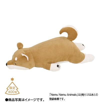 プレミアムねむねむ 抱き枕(コタロウ)