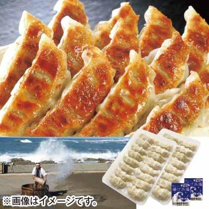 奥能登揚げ浜塩で食べる能登豚餃子