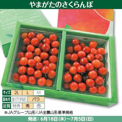 佐藤錦(2)350g×2(L又は2L、秀:バラ詰)、化粧箱入
