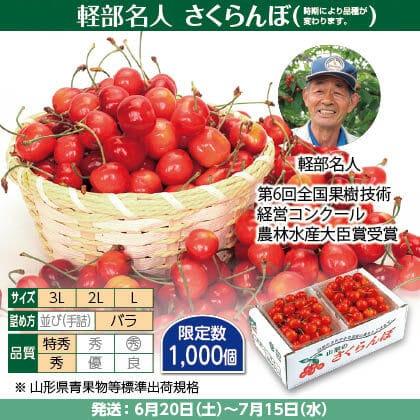 佐藤錦・紅秀峰・紅てまり(1)300g(L〜3L混、特秀・秀混:バラ詰)×2、保冷剤入