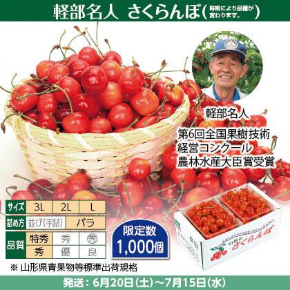 佐藤錦・紅秀峰・紅てまり(2)500g(L〜3L混、特秀・秀混:バラ詰)×2、保冷剤入