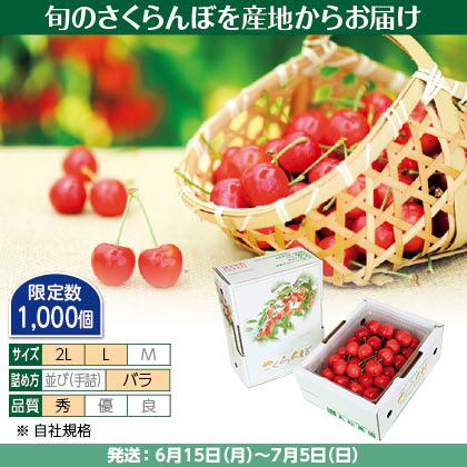 佐藤錦(10)500g(L又は2L、秀:バラ詰)