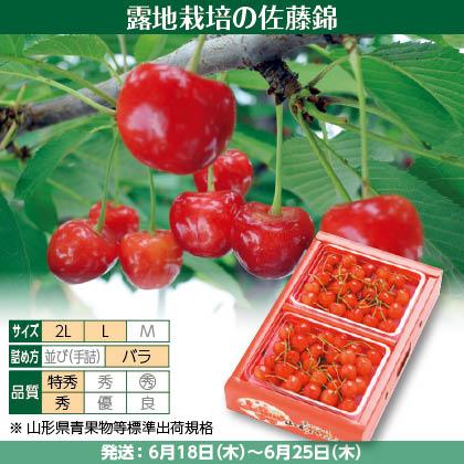 佐藤錦(16)300g(L又は2L、特秀又は秀:バラ詰)×2、化粧箱入