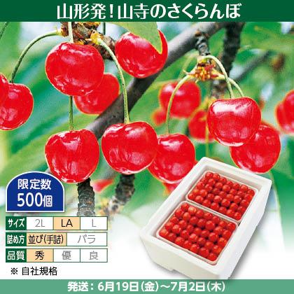 佐藤錦(18)600g(LA、秀:手詰)×2、保冷剤入