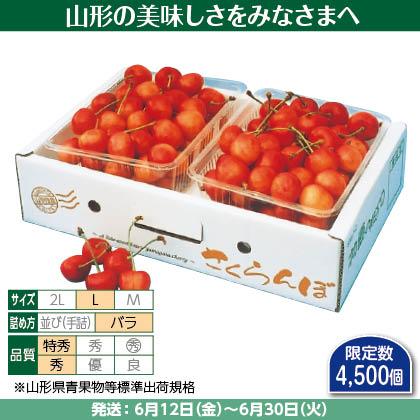 佐藤錦(25)500g(L、特秀・秀混:バラ詰)×2、 化粧箱入