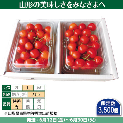 佐藤錦(27)250g(L、特秀・秀混:バラ詰)×2、 化粧箱入
