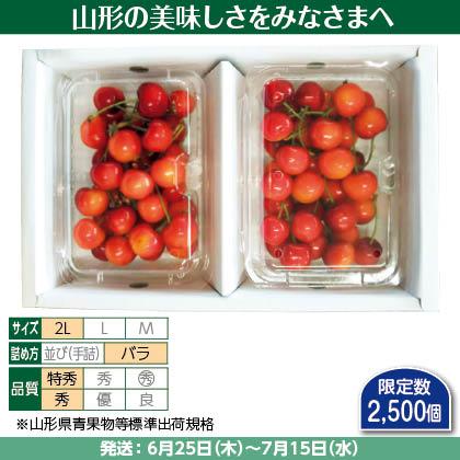 紅秀峰(9)250g(2L、特秀・秀混:バラ詰)×2、 化粧箱入