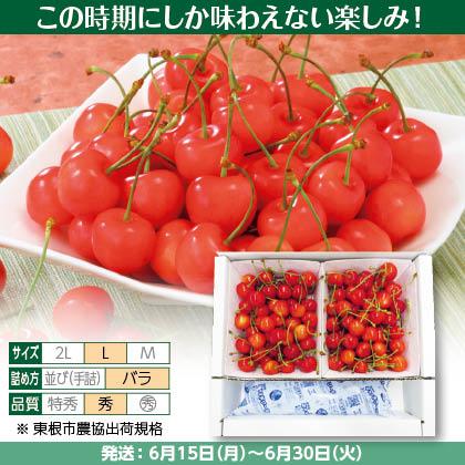 佐藤錦(30)350g(L、秀:バラ詰)×2、保冷剤入