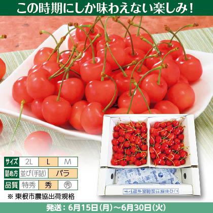 佐藤錦(32)500g(L、秀:バラ詰)×2、保冷剤入