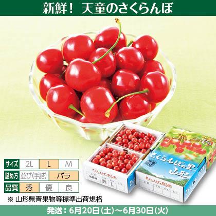 佐藤錦(33)500g(L、秀:バラ詰)×2