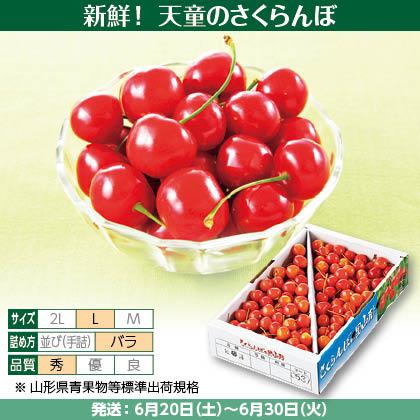 佐藤錦(34)1kg(L、秀:バラ詰)