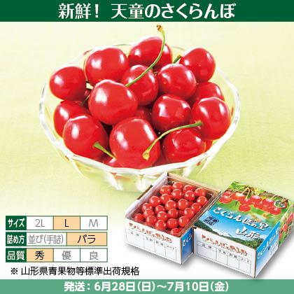 紅秀峰(12)500g(L、秀:バラ詰)