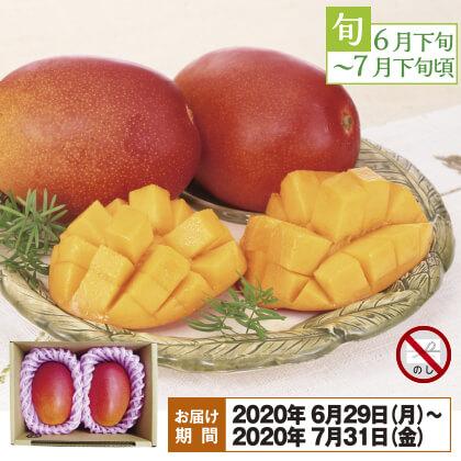 沖縄のアップルマンゴー 600g(2個)