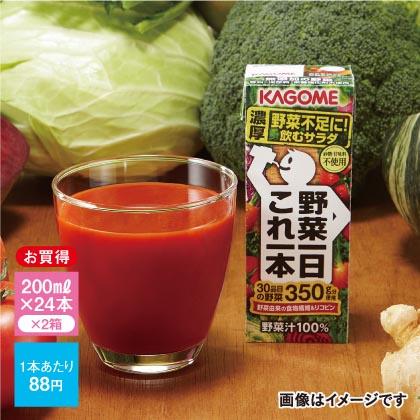 カゴメ 野菜一日これ一本B(48本)