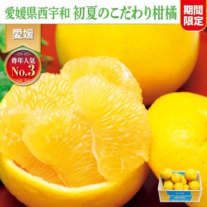 ジューシーゴールド(河内晩柑)(ご家庭用)