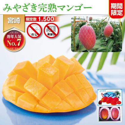 宮崎県JA西都産 完熟マンゴー
