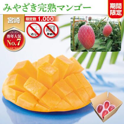 宮崎県JA西都産 わけあり完熟マンゴー