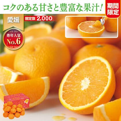 ワケあり清見タンゴール 5kg(バラ詰め)