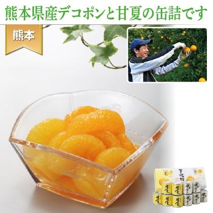 芦北柑橘(10缶入)