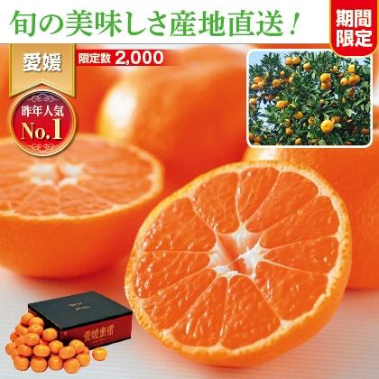 愛媛みかん 5kg家庭用(バラ詰)