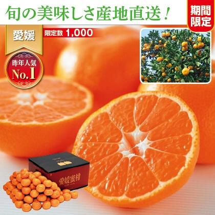 愛媛みかん 9kg家庭用(バラ詰)