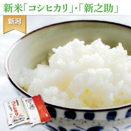 特別栽培米コシヒカリと新之助