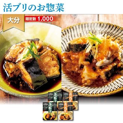 大分県蒲江 豊の活ブリお惣菜セット