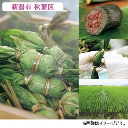 〈森林〉笹だんご(つぶあん50個)