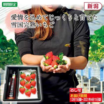 雪国完熟いちご 越後姫・苺の飲む酢セット(後期)