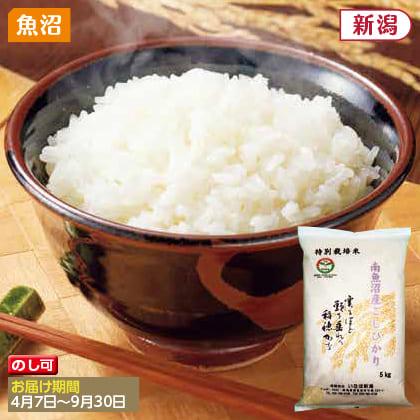 南魚沼産コシヒカリ特別栽培米 5kg(2019年産)