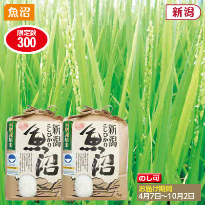 魚沼コシヒカリ特別栽培米 5kg×2(2019年産)