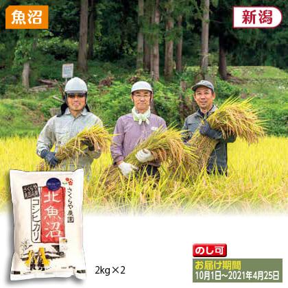 北魚沼コシヒカリ 無洗米2kg×2(2020年産)
