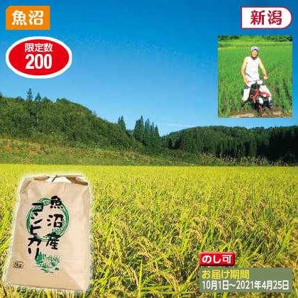 魚沼コシヒカリ 5kg(2020年産)