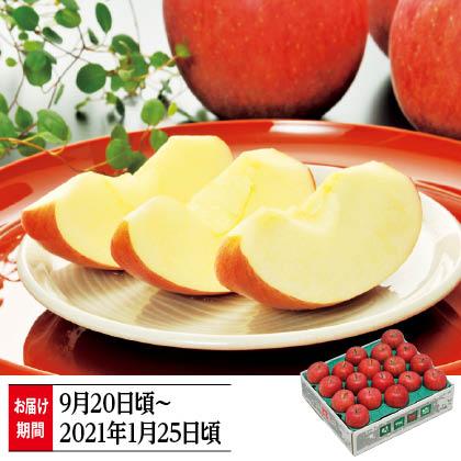信州りんご 家庭用 5kg