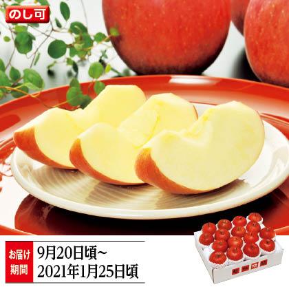 信州りんご 特秀 5kg