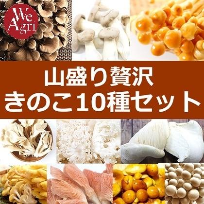 山盛り贅沢キノコ10種セット