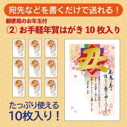 (2)お手軽年賀はがき10枚入り