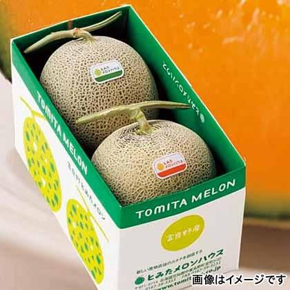 【期間限定商品】富良野メロン・北海道産青肉メロン詰め