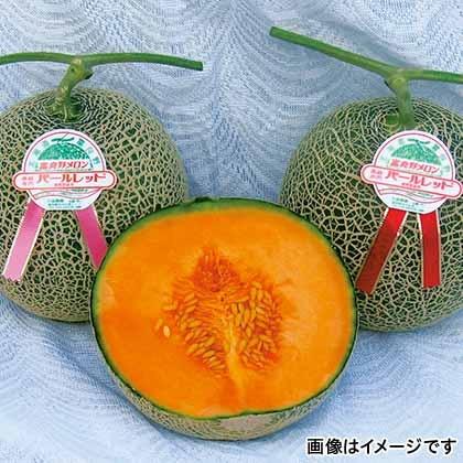 【期間限定商品】富良野パールレッドメロン 4個
