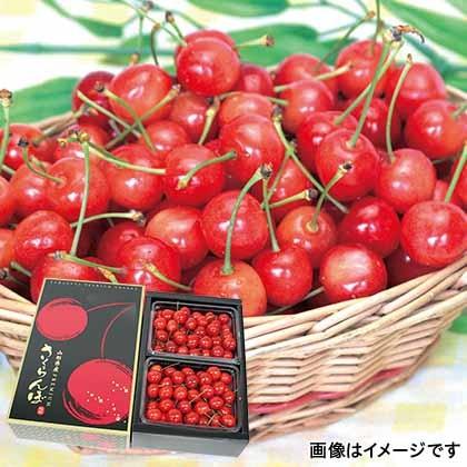 【期間限定商品】プレミアムさくらんぼ 500g×2