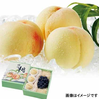 【期間限定商品】岡山産白桃と種なしピオーネ