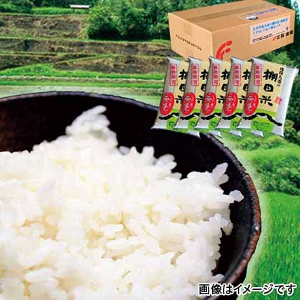 大分玖珠九重の棚田米(無洗米) 10kg
