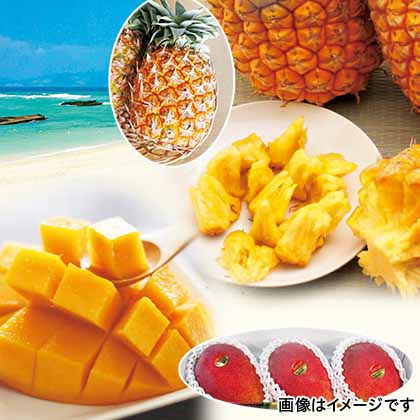 【期間限定商品】マンゴーとボゴールパインのセット
