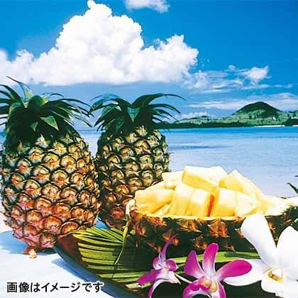 【期間限定商品】石垣島産パイン 4.5kg