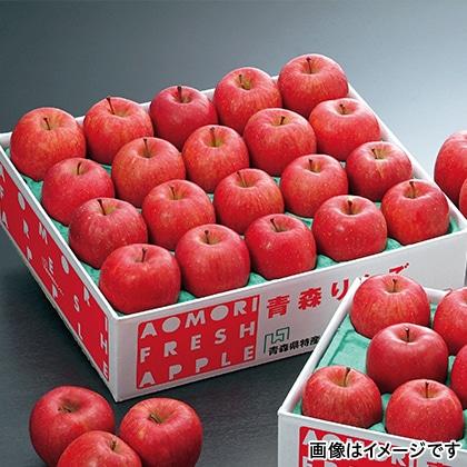 青森りんご「サンふじ」 5kg  【12月5日以降発送】