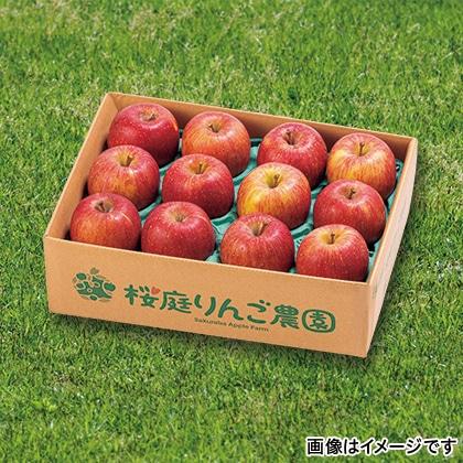 【期間限定】 家庭用サンふじ小箱