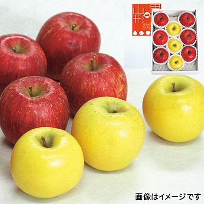 【期間限定】 コンテスト受賞者のりんごセット